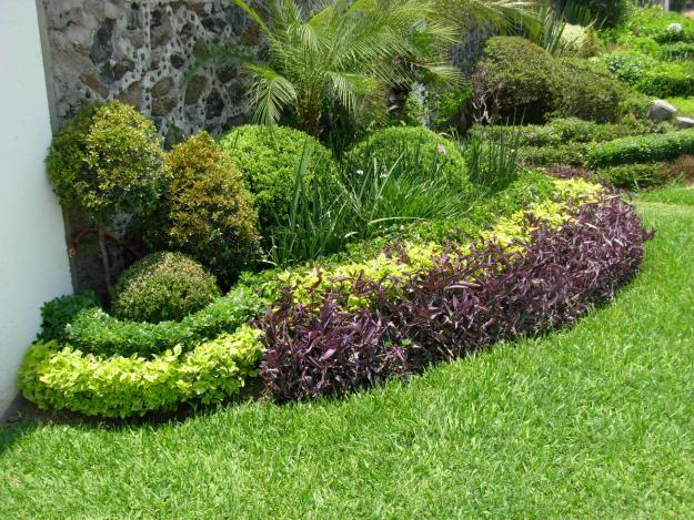 Montt jardines dise o mantencion de areas verdes en conc n for Modelos de jardines exteriores
